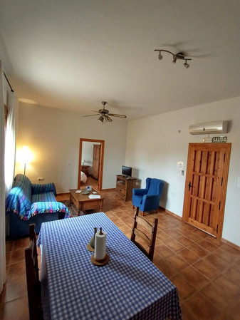 Apartamento Un Dormitorio Planta Baja