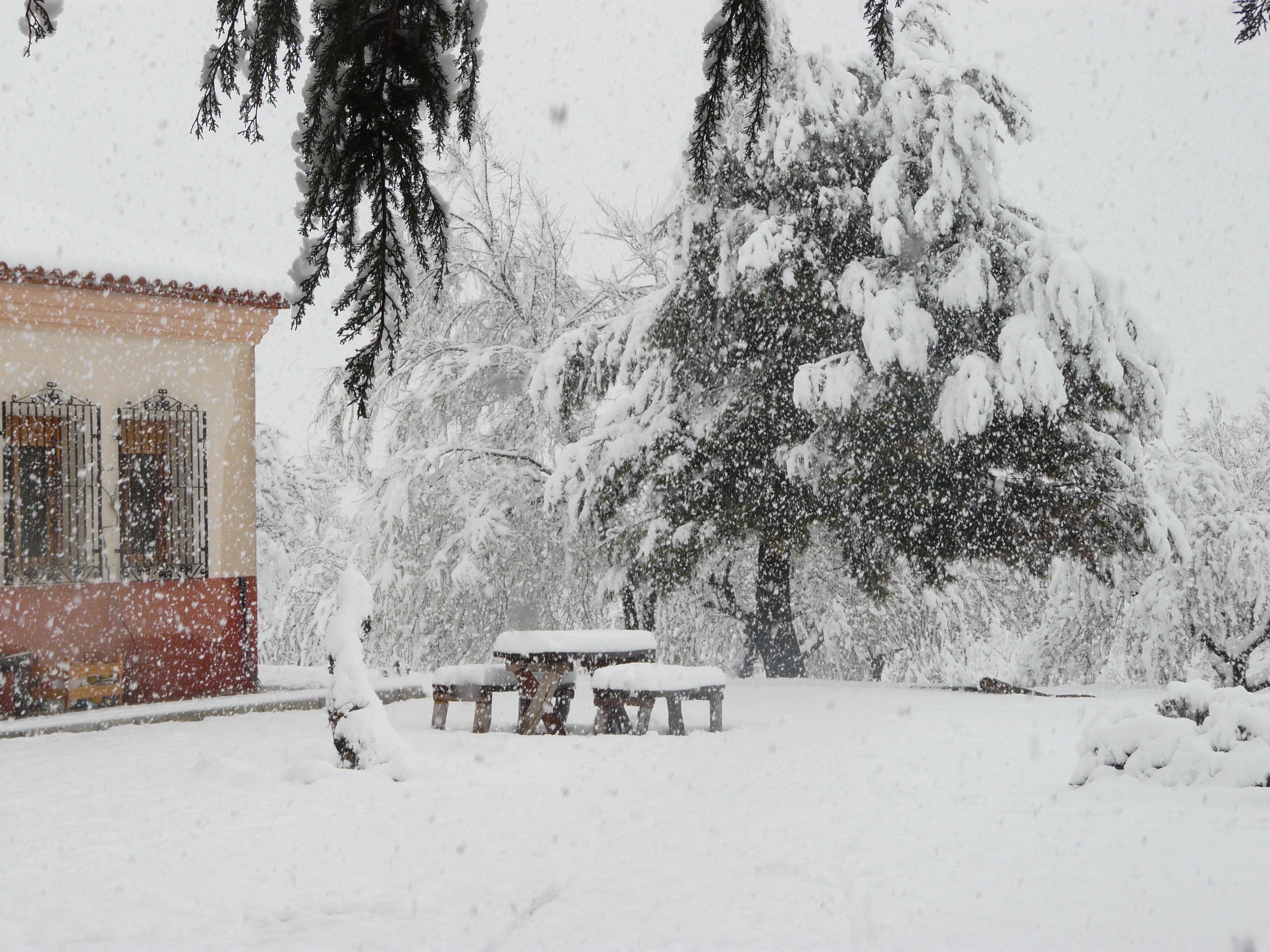 Snowy scene at Cortijo la Estrella