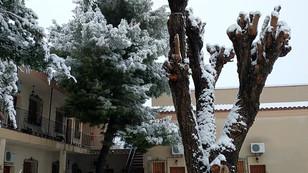 Nieve Enero 2021 Cortijo la Estrella