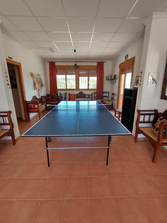 Mesa Ping Pong Cortijo la Estrella