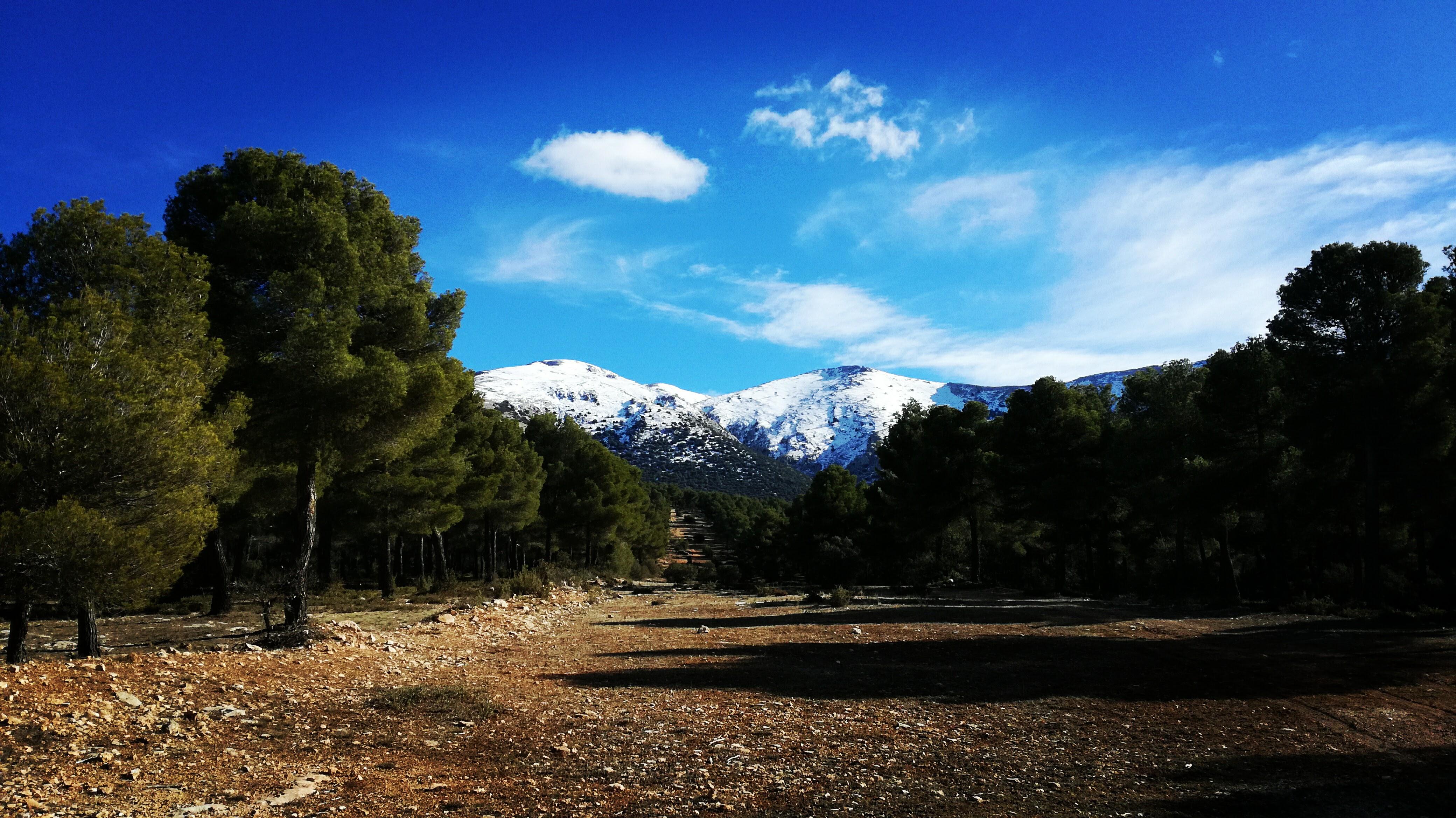 Sierra Maria Natural Park
