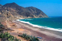 Playa El Algarrobico