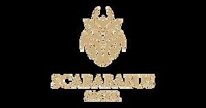 Scarabaeus-Sacer--LLC-Egypt-36777-153960