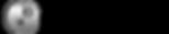 Steel DIS-TRAN Logo 1.png