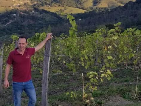 Eu e minha paixão pelo vinho
