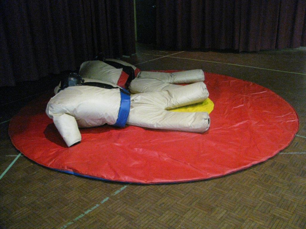 Ultimate Party Services Sumo Suits Rentals Mississauga