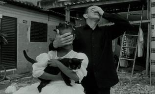 «Gato Preto» Filme de Arte - Melhor Direção de Fotografia William Sossai