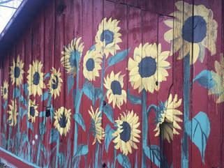 Custom painted barn siding