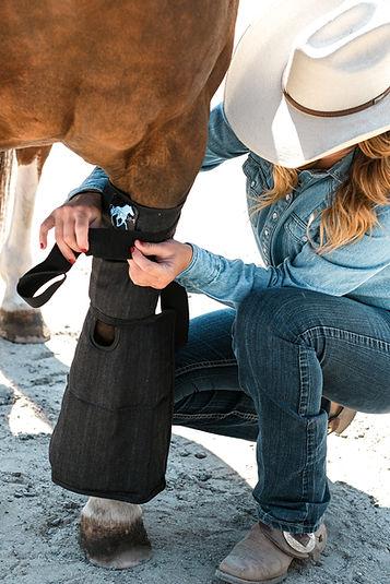 Hock Boot-cannon bone-horse icingDSCF682