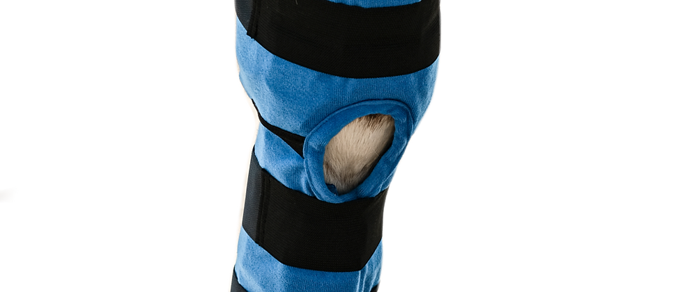 Full-Leg Ice Wraps (Pair of 2) Front & Hind Legs
