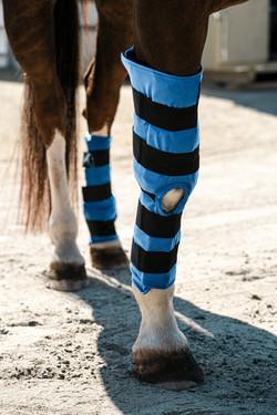 Full-Leg Hock Boot