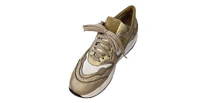 Sneaker gold1.tif