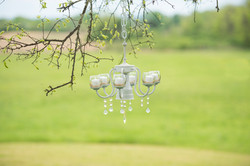 Chandeliers adorn the trees