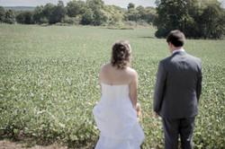 A walk thru the bean fields