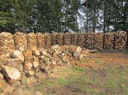 Aus Holz wird Kaminholz!