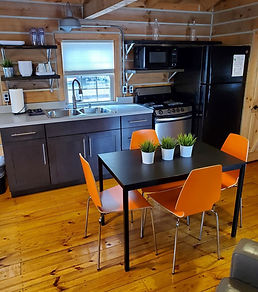 Modern cabin pic 2.jpg
