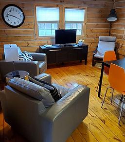 Modern cabin pic 1.jpg