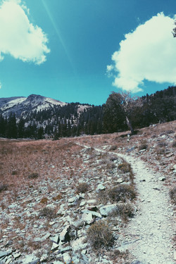 GREAT BASIN, NV