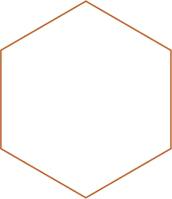 hexagon new color@2x.png