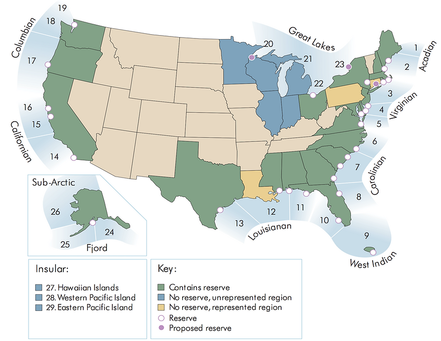 Map shows only NERR on Florida's east coast