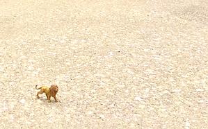 tiny lion big roar SGN.png