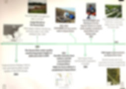 Guana timeline page 3_edited.jpg