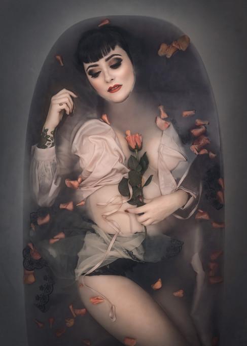The Wild Rose Charlotte Johnson