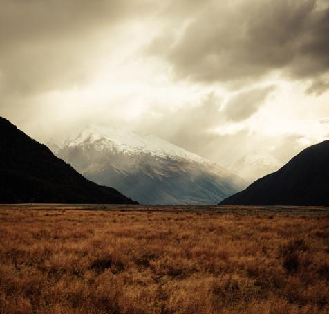 The Light by Matthew Davey