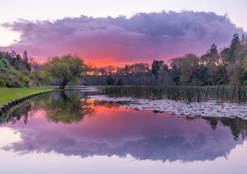 Unusual Sunset at Lake Te Koutu by Meghan Maloney