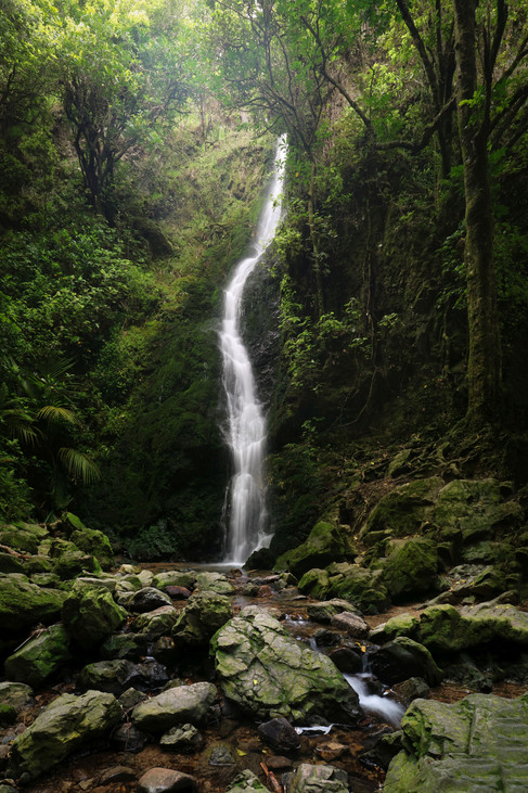 Percy Reserve Waterfall by Tanya Rowe