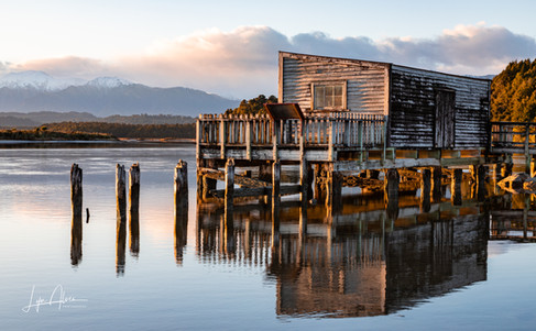 Okarito Boat shed catching the morning sun by Lyn Alves