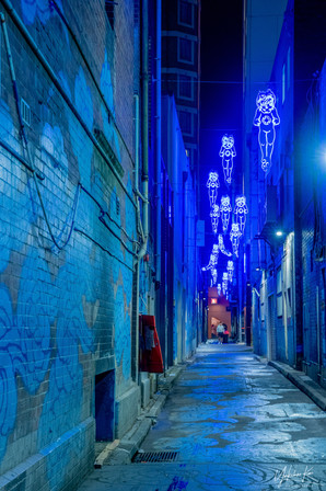 The Blue District by Carole Garside