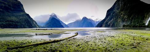 Milford Sound by Martin McCrae