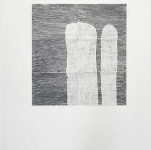 Plantas, 2020. Grafite sobre papel, 120 x 128 cm