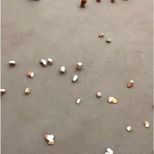 tamandua, formiga e o buraco, 2018. Instalação de pedra e argila. dimensão total variável. Com Silvia Jábali
