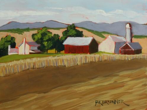 Lancaster County Farm 2_1