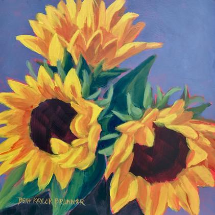 Three Sunflowers_1