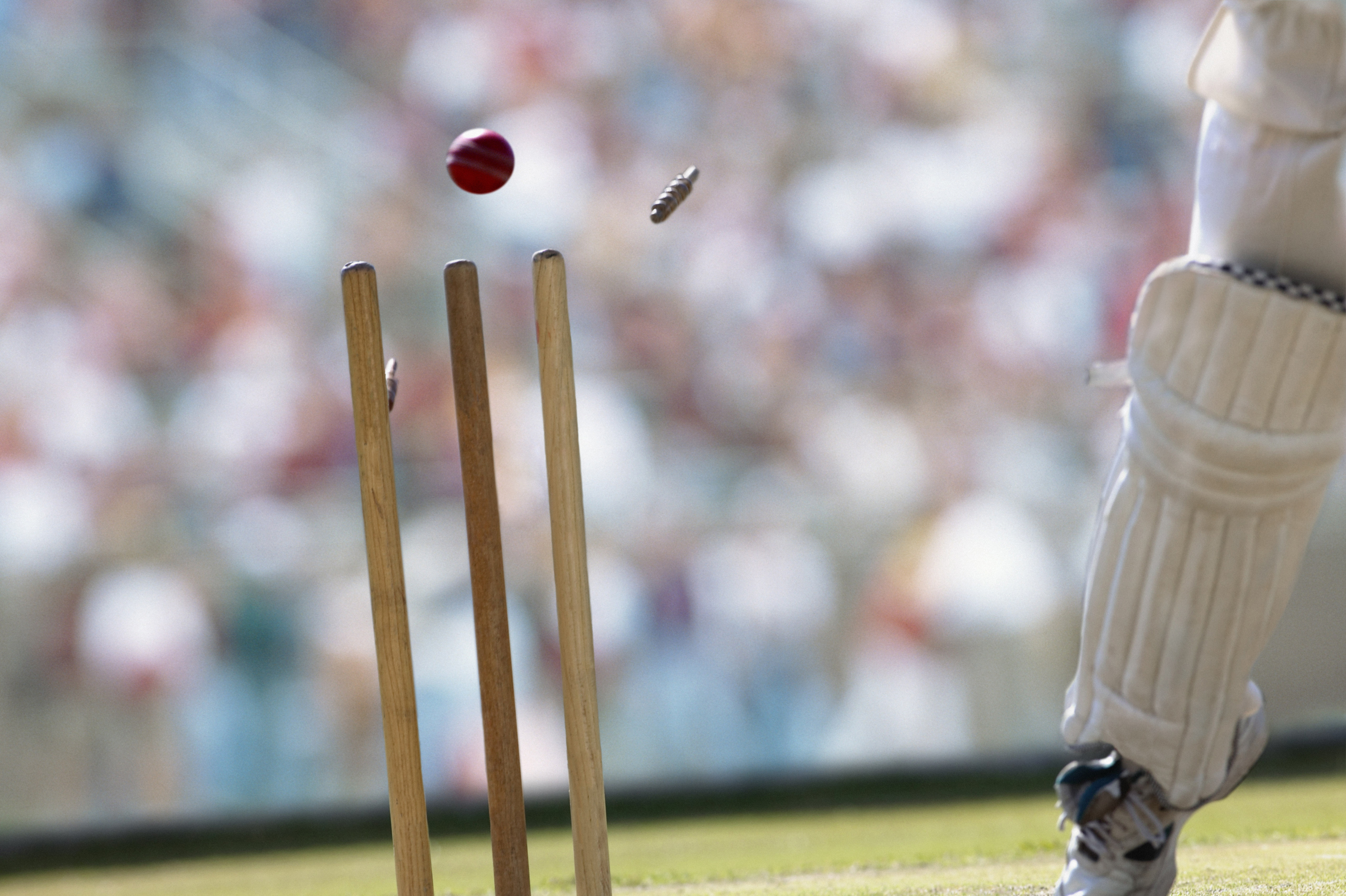 Cricket-rvb