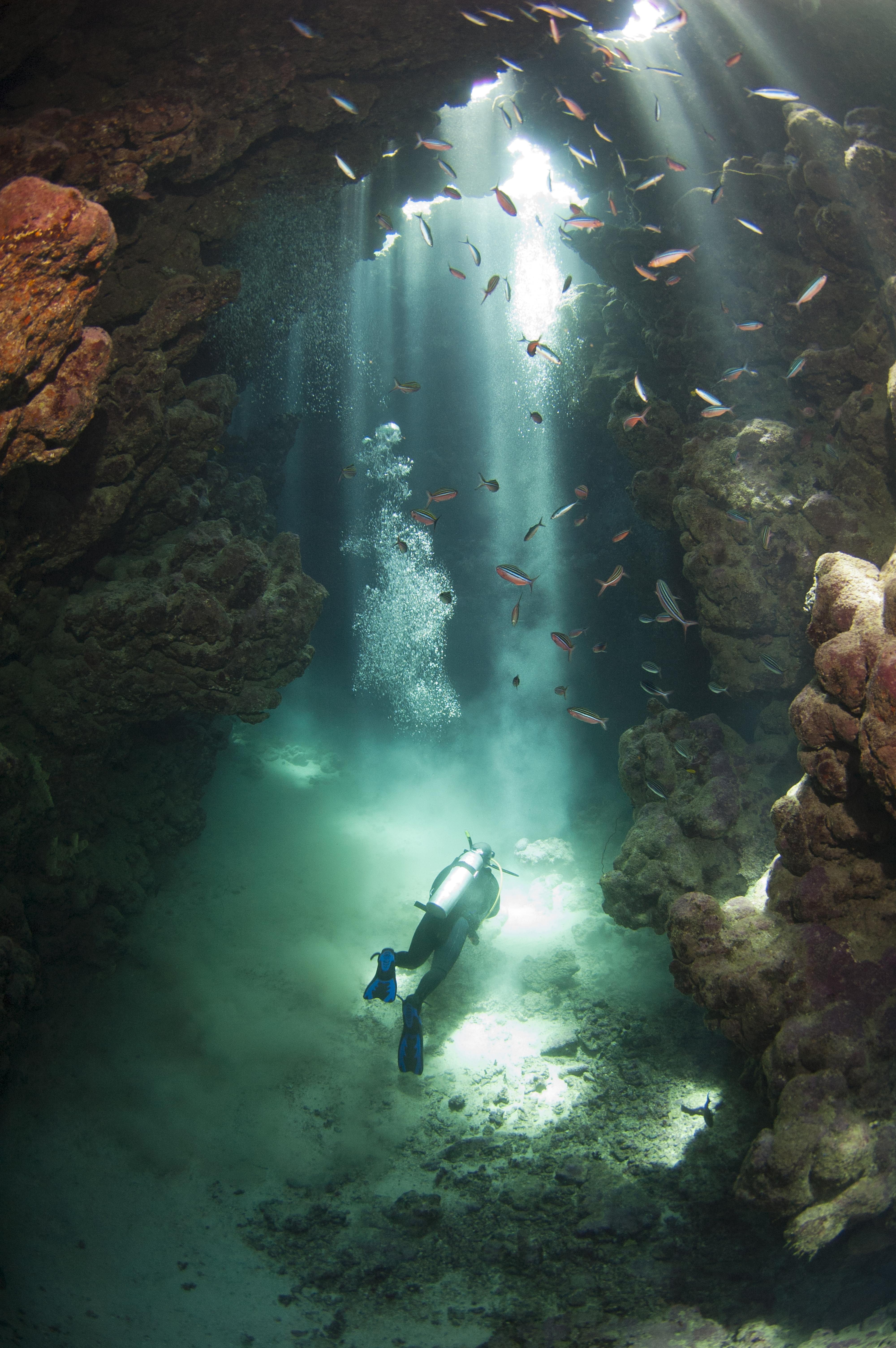 Diver-scuba diving-rvb