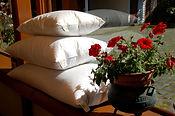 Almohadas de Pluma