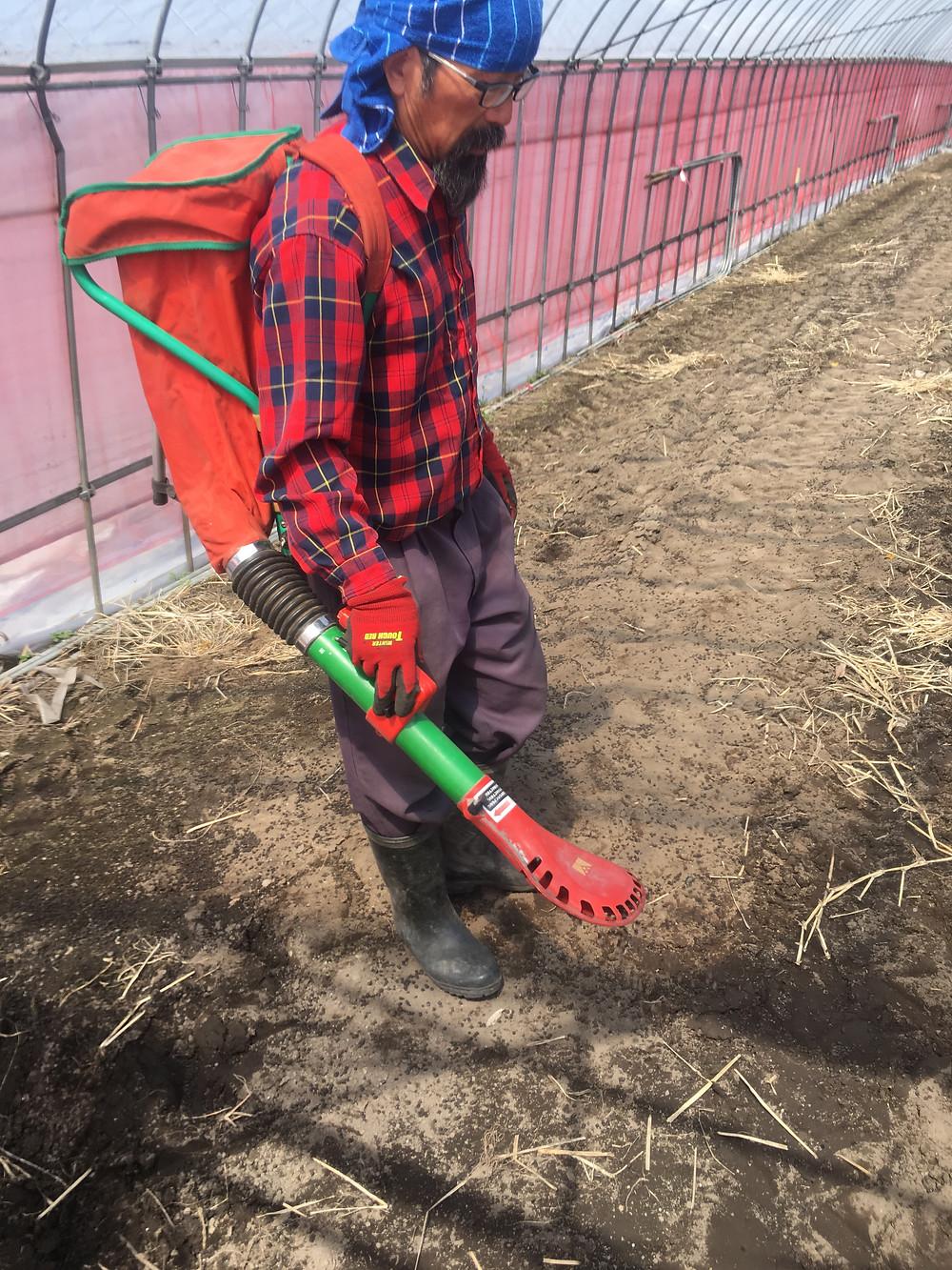 肥料パックを背負って肥料を散布する様子