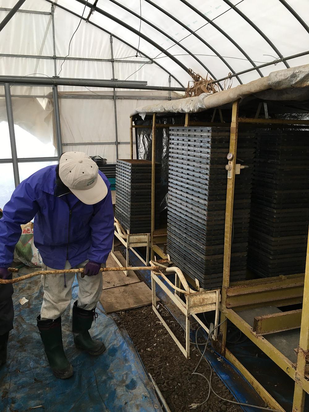 種籾を温める機械に入れている様子