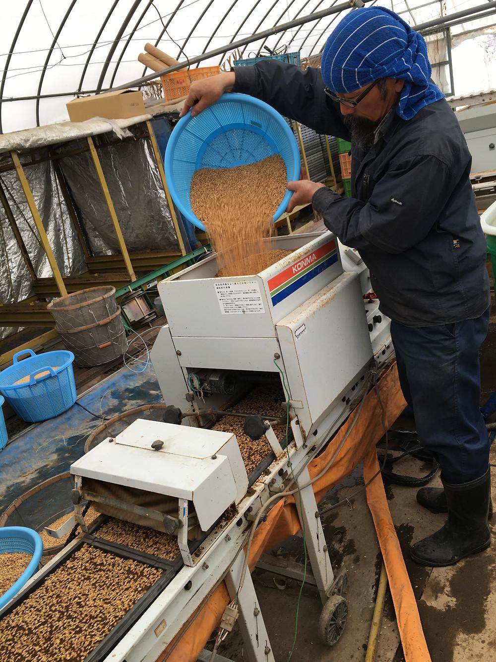 種籾を種まき機械に入れている様子