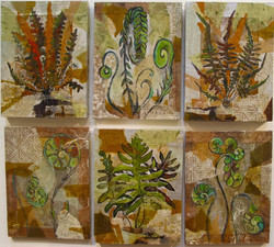 Botanical Ferns - 1