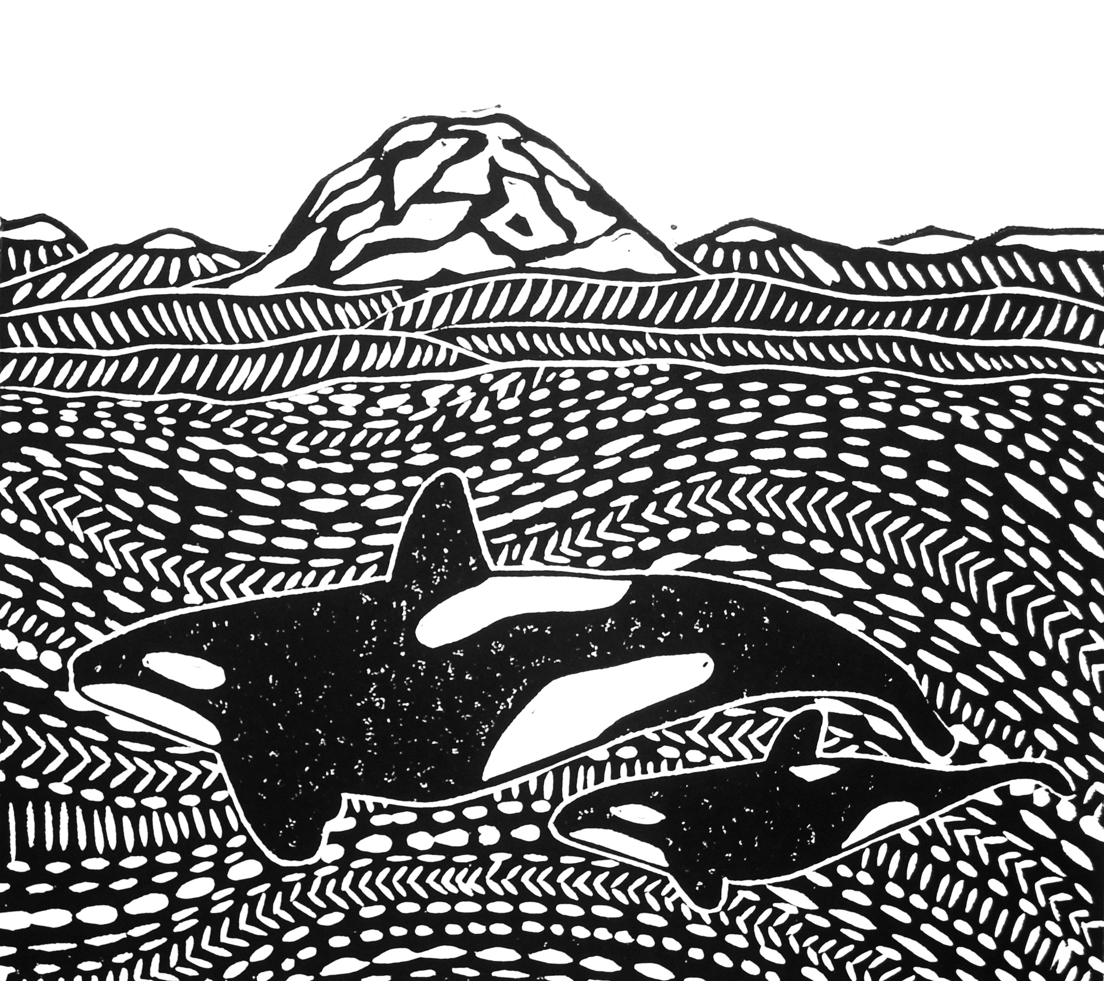 Orca and Calf