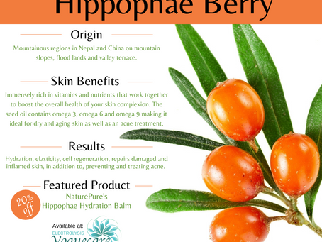 What Is Hippophae? And Why Do I Want It?