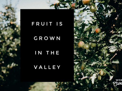 Fruit is Grown in the Valley