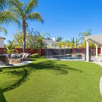 tudal backyard grass.jpg
