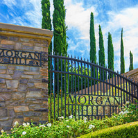 morgan hill gate.jpg