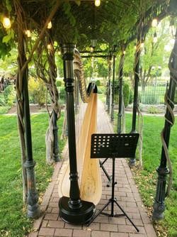 Summer wedding at Wadley Farms